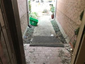 harvey houston cleanup